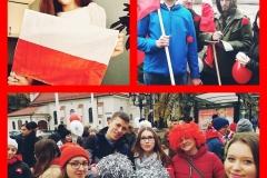 Polish_20201110_165642271